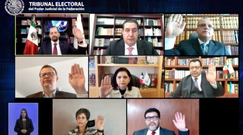 El PVEM aparecerá primero en la boleta electoral antes que el PT: TEPJF